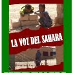 La Voz del Sahara... Vacaciones en Paz 2008 3