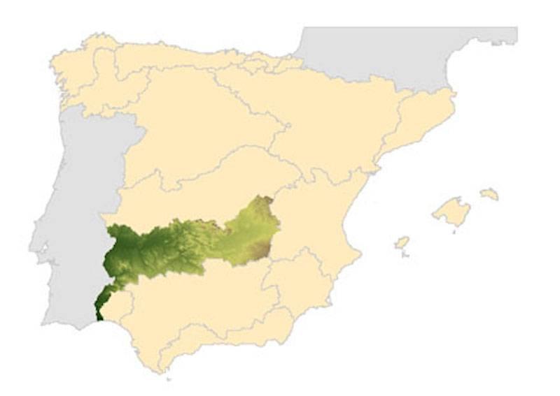 mapa confederacion higrografica del guadiana
