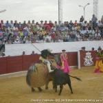 Resumen de la corrida de Toros en Herencia 15
