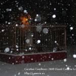 dsc 8423 150x150 - La nieve aparece después de navidad