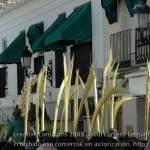 herencia domingo de ramos semana santa 2009 0023 150x150 - Fotos Domingo de Ramos 2009