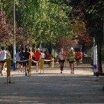 Herencia XXXIII Carrera Popular Atletismo 5 150x150 - Deogracias Villalta se adjudica la XXXIII Carrera Popular Villa de Herencia