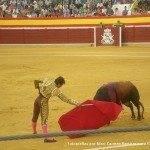 toros en herencia 0002 150x150 - Referencias en medios a los Toros en Herencia