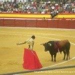 toros en herencia 0004 150x150 - Referencias en medios a los Toros en Herencia