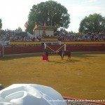 toros en herencia 0011 150x150 - Referencias en medios a los Toros en Herencia