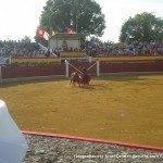 toros en herencia 0012 150x150 - Referencias en medios a los Toros en Herencia