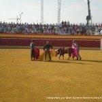 toros en herencia 0014 150x150 - Referencias en medios a los Toros en Herencia