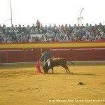 toros en herencia 0024 150x150 - Referencias en medios a los Toros en Herencia