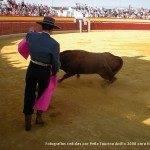 toros en herencia net 0008 150x150 - Herencia, Hoy, Ayer y Siempre Taurina