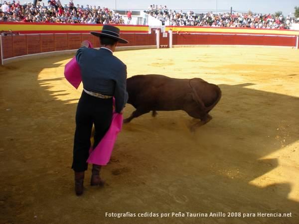 Toreando. Toros en Herencia (Ciudad Real)