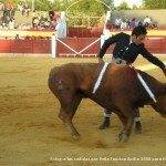 toros en herencia net 0019 150x150 - Herencia, Hoy, Ayer y Siempre Taurina
