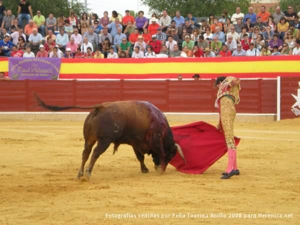toros en herencia net 0037 - La subvención a los toros en Herencia: un acto legítimo, popular y, sobre todo, democrático