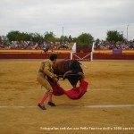 toros en herencia net 0038 150x150 - Herencia, Hoy, Ayer y Siempre Taurina