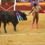 toros en herencia net 0045 150x150 - Herencia, Hoy, Ayer y Siempre Taurina