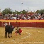 toros en herencia net 0046 150x150 - Herencia, Hoy, Ayer y Siempre Taurina