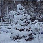 arbol denavidad en parque herencia 150x150 - Otro año más la nieve nos visita