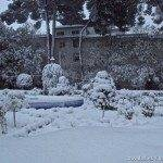 Otro año más la nieve nos visita 4