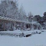 nieva en herencia 150x150 - Otro año más la nieve nos visita