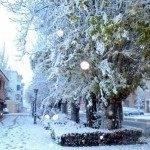 Otro año más la nieve nos visita 6