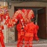 Fotos del pasacalles de Carnaval del sábado 2010 5