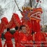 Fotos del pasacalles de Carnaval del sábado 2010 8