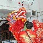 Fotos del pasacalles de Carnaval del sábado 2010 11