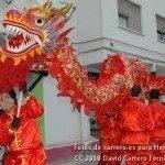 Fotos del pasacalles de Carnaval del sábado 2010 12