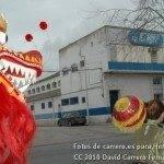 Fotos del pasacalles de Carnaval del sábado 2010 13