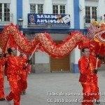Fotos del pasacalles de Carnaval del sábado 2010 15