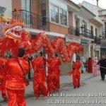 Fotos del pasacalles de Carnaval del sábado 2010 16