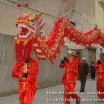 Fotos del pasacalles de Carnaval del sábado 2010 19