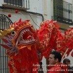 Fotos del pasacalles de Carnaval del sábado 2010 21