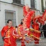 Fotos del pasacalles de Carnaval del sábado 2010 23