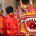 Fotos del pasacalles de Carnaval del sábado 2010 34