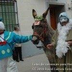Fotos del pasacalles de Carnaval del sábado 2010 48