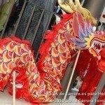 Fotos del pasacalles de Carnaval del sábado 2010 73