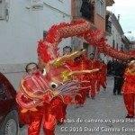 Fotos del pasacalles de Carnaval del sábado 2010 87