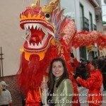 Fotos del pasacalles de Carnaval del sábado 2010 92