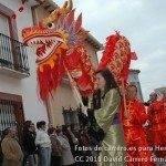 Fotos del pasacalles de Carnaval del sábado 2010 94
