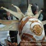 Fotos del Pasacalles de Carnaval 2010 del Viernes 11