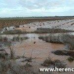 arroyo valdehierro corriendo sin miran donde 150x150 - Agua en el Puente alto y carretera Villarta