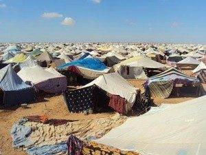 campamento de protesta 300x225 - Tragedia humana en el Sahara Occidental. Comunicado de la A.A.P.S. El Uali de Herencia