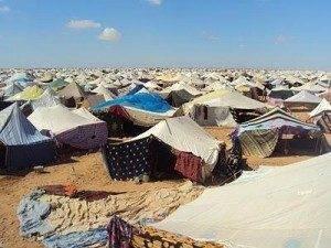 campamento de protesta1 300x225 - Tragedia humana en el Sahara Occidental. Comunicado de la A.A.P.S. El Uali de Herencia