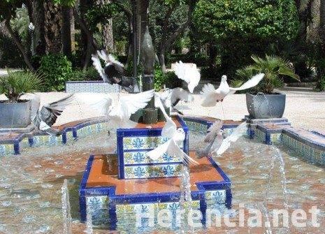 2 concurso fotos san anton jose maria sanchez aguilera 465x335 - Fallo del X Concurso de fotografía de San Antón
