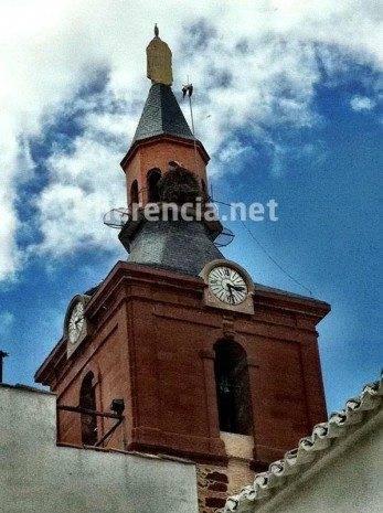 Cigüeña queda enganchada en el pararrayos de la iglesia 13