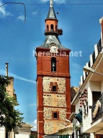 Cigüeña queda enganchada en el pararrayos de la iglesia 12