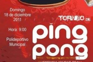 pin pon redu 300x200 - III Torneo de Ping-pong de invierno para jóvenes