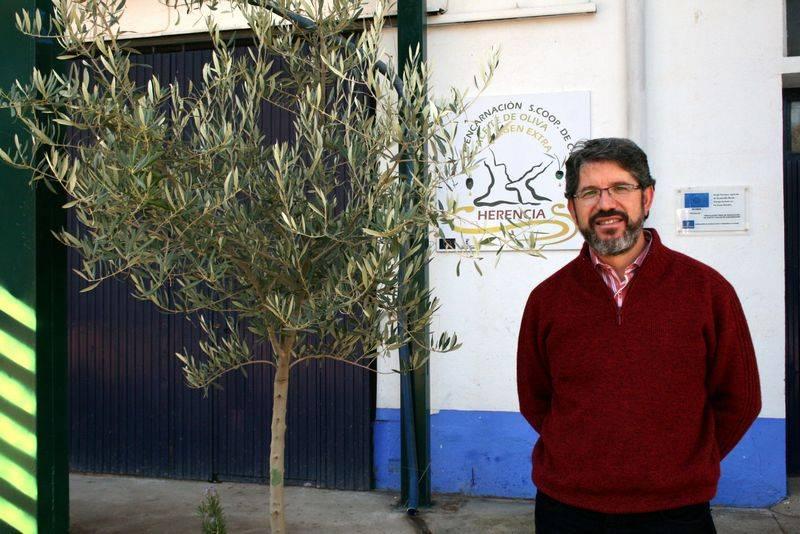 Manuel José Díaz-Pacheco, presidente de la Cooperativa Almazarera La Encarnacion