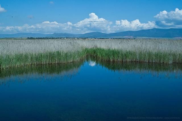 la tablas de daimiel antiguo acuifero 23 - Piden 4 años de cárcel para un agricultor por extraer más agua de la permitida de un acuífero