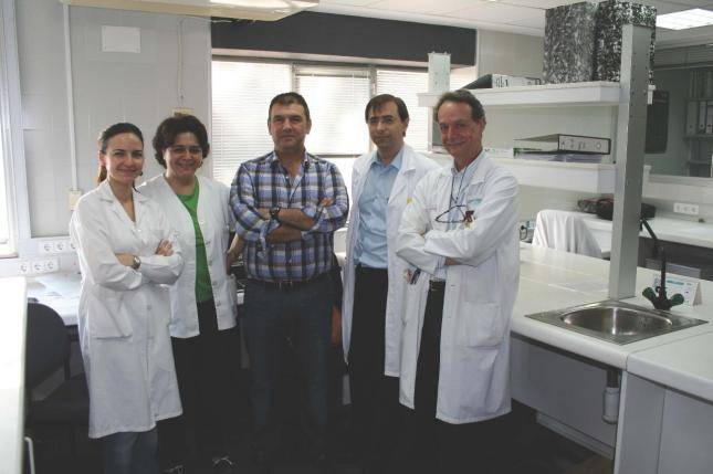 Estudio avala la seguridad del transplante de células madre en pacientes de ELA 2